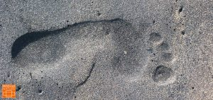 Footprint - Fußabdruck. MODULENATURE